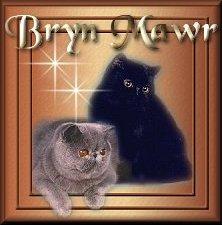 Bryn Mawr Exotics