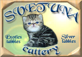 Svetuna Cattery