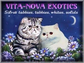 Vitanova Exotics